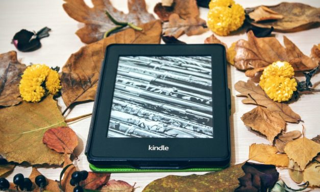 Free Training: How to Become a Successful Kindle Author